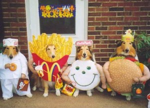 Image result for costume pet parade